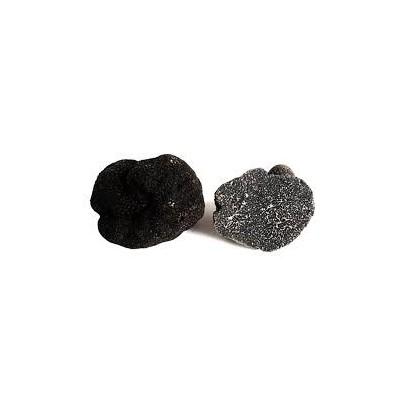 TRUFFE du Périgord Noir 20 Grammes Boite